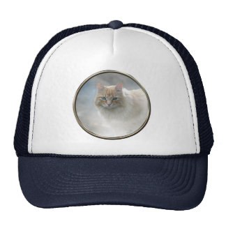 Bright Eyes Cat hat ... White and Navy