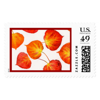 Bright Fall Colors Aspen Leaves Postage Stamp