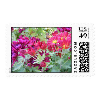 Bright Flowers Postage