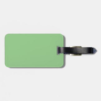 Bright Fresh Spring Mint Green Solid Color Bag Tag