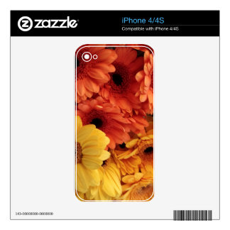 Bright Gerbera Flowers, Orange Yellow, Flora Decals For The iPhone 4S