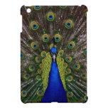 Bright girly pretty peacock bird nature photograph case for the iPad mini