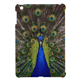 Bright girly pretty peacock bird nature photograph case for the iPad mini