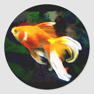 Bright Golden Koi in Dark Fish Pond Classic Round Sticker