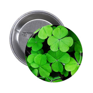 Bright Green Clovers Pin