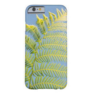 Bright Green Fern On A Blue Background Barely There iPhone 6 Case