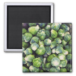 Bright Green Fresh Brussels Sprouts Magnet