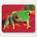 Bright Green Frog Mouse Mat Mousepad