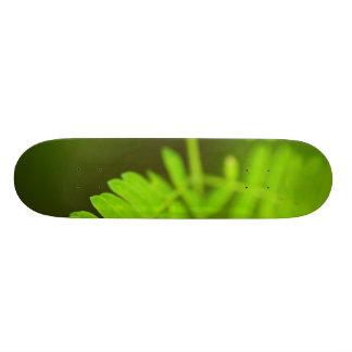 Bright Green Leaf Skate Board Deck