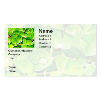 Bright Green Leaves with Raindrops Business Card