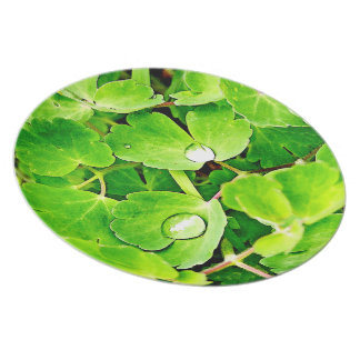 Bright Green Leaves with Raindrops Melamine Plate