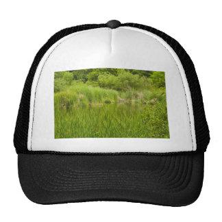 Bright Green Morning Trucker Hats