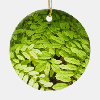 Bright, green, small, oval leaves of acacia ceramic ornament