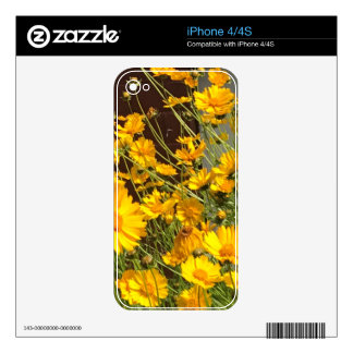 Bright happy yellow flowers in a bunch iPhone 4 decals