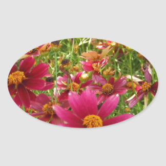 Bright Hot Pink and Yellow Daisy flowers Oval Sticker