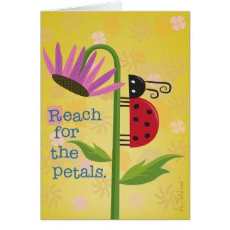 Bright Ladybug on Purple Flower Greeting Card