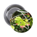 Bright Leaves -CO Pinback Buttons