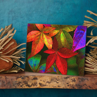 Bright leaves display plaque
