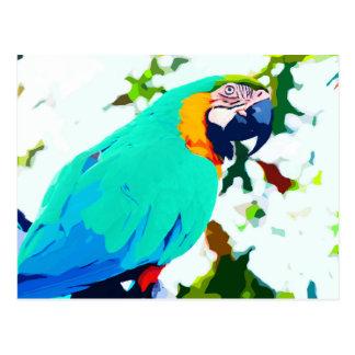Bright Macaw Parrot Portrait Postcard