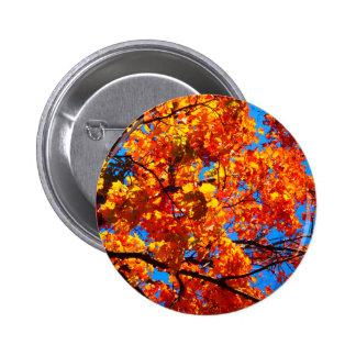 Bright Orange Autumn Leaves Photo 2 Inch Round Button