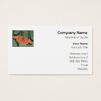 Bright orange butterfly. Comma. Business Card