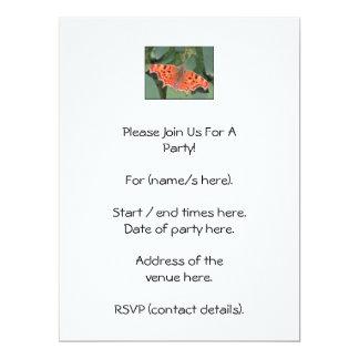 Bright orange butterfly. Comma. 6.5x8.75 Paper Invitation Card