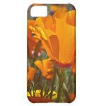 Bright orange california poppies iPhone 5C cover
