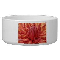 Bright Orange Dahlia Flower Bowl