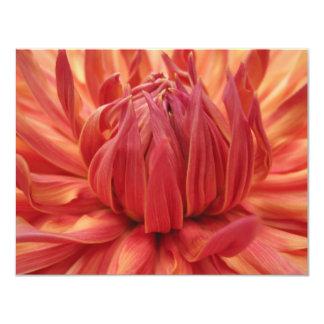 Bright Orange Dahlia Flower Card