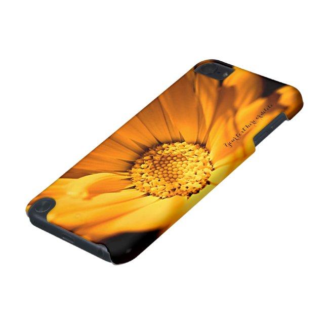 Bright Orange Daisy Wildflower