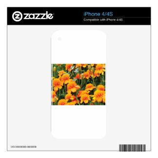 bright orange flowers iPhone 4 decal