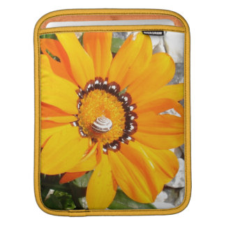 Bright Orange Gazania Flower with Snail iPad Sleeve