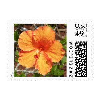 Bright Orange Hibiscus Stamp