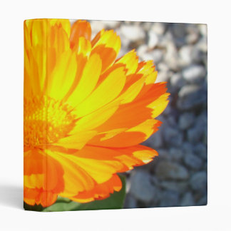 Bright Orange Marigold In Bright Sunlight 3 Ring Binder