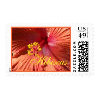Bright Orange Pink Hibiscus Postage