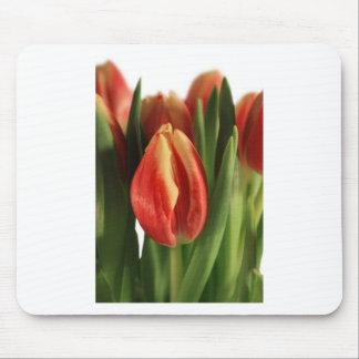 bright orange tulips - customizable mouse pad