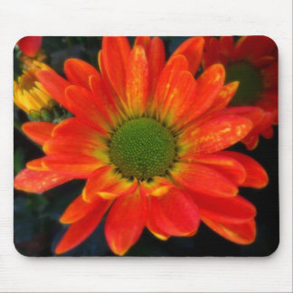 Bright Orange with Raindrops Mouse Pad