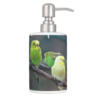 Bright Parakeets Budgies Parrots Birds Photo Toothbrush Holders