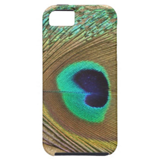 Bright peacock eye bird feather girly chic photo iPhone 5 covers