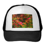 Bright pink and yellow Daisy Wild flowers Mesh Hat
