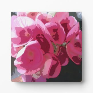 Bright Pink Begonia Graphic Plaque