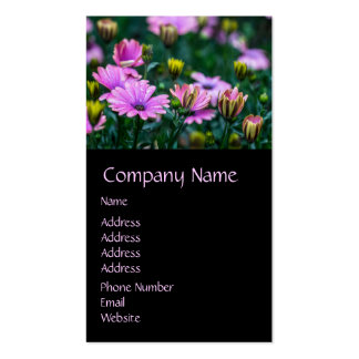 Bright Pink Daisy Flowers Double-Sided Standard Business Cards (Pack Of 100)