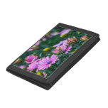 Bright Pink Daisy Flowers Tri-fold Wallet