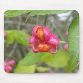 Bright Pink Eastern Wahoo Berry Mouse Pad