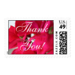 Bright Pink Floral Thank You! Postage Stamps