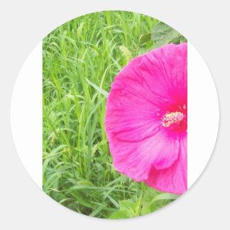 Bright Pink Flower in Tall Grass Round Stickers