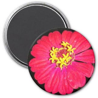 Bright pink flower round magnet