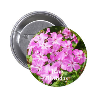 Bright Pink Flowers Pinback Button
