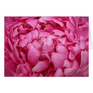 Bright Pink Peony Card