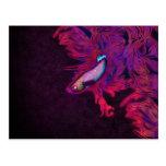 Bright Pink, Purple, and Blue Beta Fish Postcard
